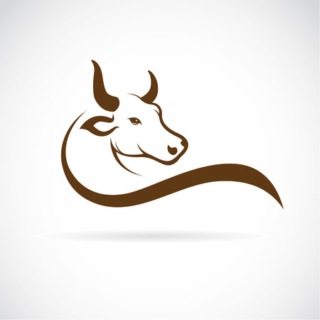 Illustration pour Vector image of an bull head on a white background - image libre de droit