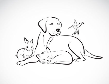 Illustration pour Vector group of pets - Dog, cat, bird, rabbit, isolated on white background - image libre de droit