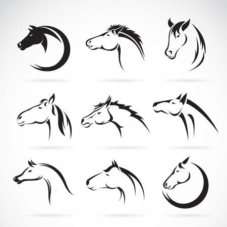 Illustration pour Vector group of horse head design on white background. - image libre de droit