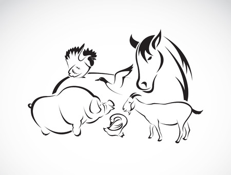 Foto de Vector farm animal set on white background, horse,pig,chicken,donkey,duck,goose - Imagen libre de derechos