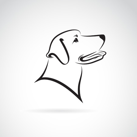 Ilustración de Vector image of an dog labrador on white background - Imagen libre de derechos