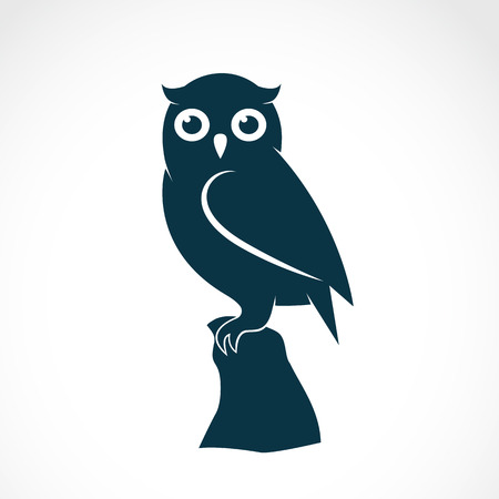 Photo for Vector image of an owl on white background - Royalty Free Image