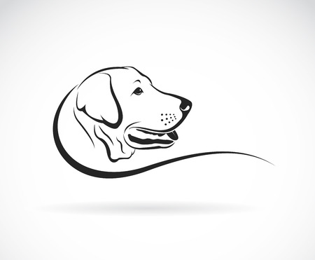 Photo for Vector image of an dog labrador head on white background - Royalty Free Image