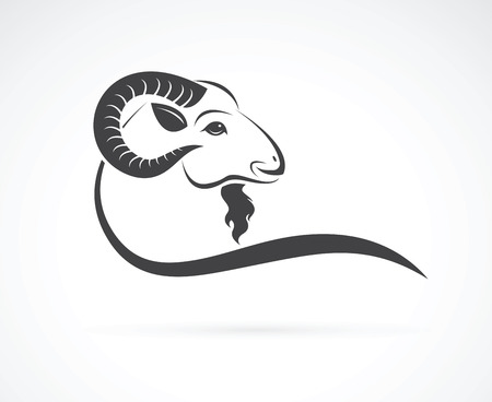 Illustration for Vector image of an goat head design on white background - Royalty Free Image