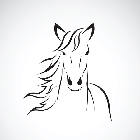 Illustration pour Vector image of a horse head design on white background, Horse Logo. Wild Animals. Vector illustration. - image libre de droit