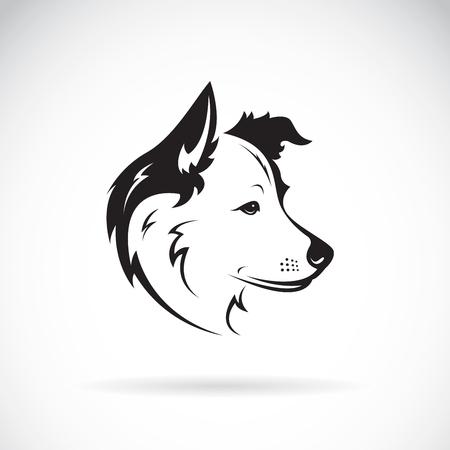Ilustración de Vector of a border collie dog on white background. Pet. Animal. - Imagen libre de derechos