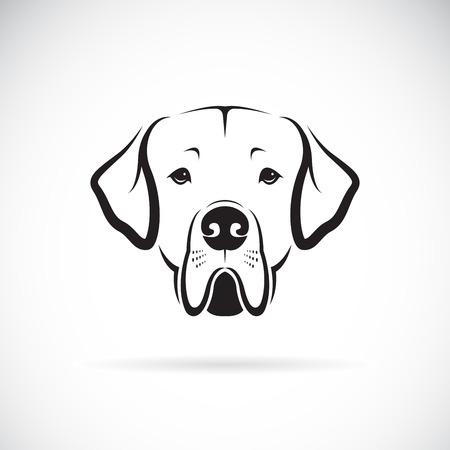 Ilustración de Great Dane dog head on white illustration. - Imagen libre de derechos