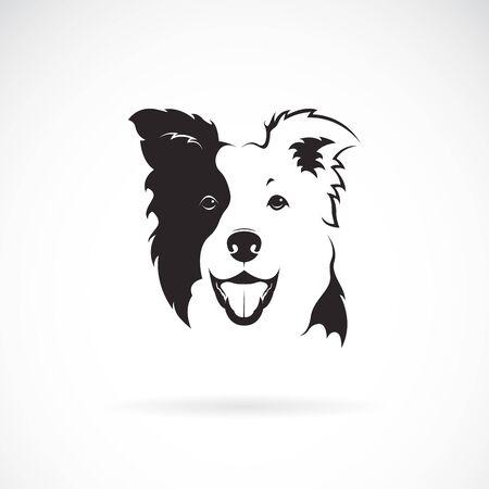 Illustrazione per Vector of a border collie dog on white - Immagini Royalty Free