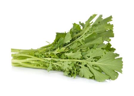 Photo for fresh turnip greens on white background - Royalty Free Image