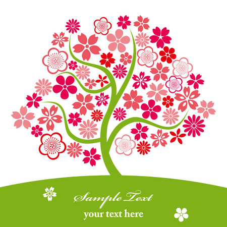 Cherry blossoms. Illustration vector.