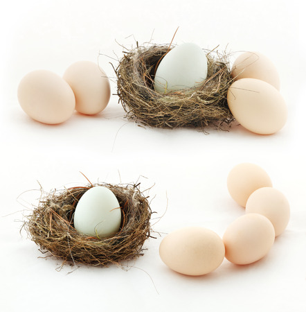 Photo pour Composition with eggs in the nest and outside of the nest - image libre de droit