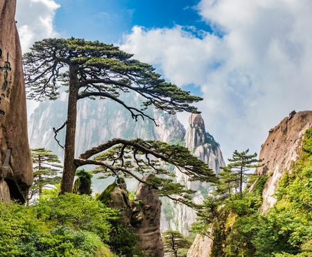 Photo pour Huangshan Mountain Scenic Area, Huangshan City, Anhui Province - image libre de droit