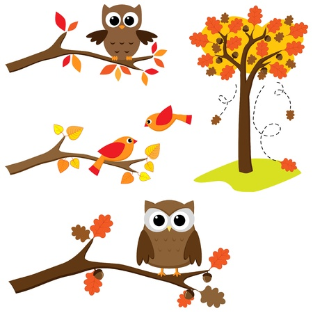 Set of autumn nature elements: branches with sitting owls and birds and .