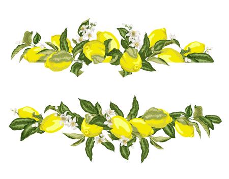 Ilustración de Lime template frame border wth citrus fruits and flowers on the branches in graphic vector illustation in realistic design - Imagen libre de derechos