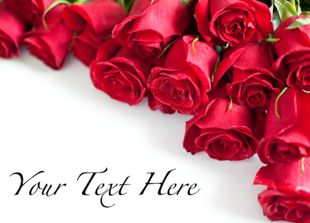 Photo for Red roses on white background - Royalty Free Image