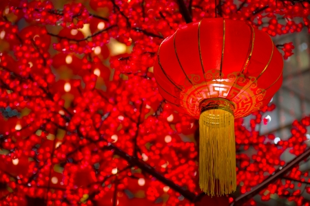 Photo pour Detail of Chinese New Year laterns hanging on tress - image libre de droit