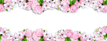 Photo for Magnolia and hortensia isolated on white background and place for your photo or text. Copy space. - Royalty Free Image