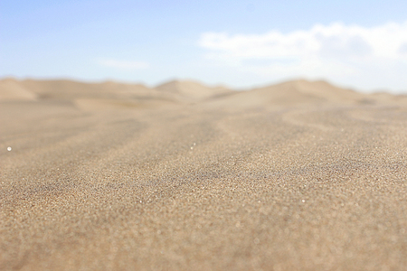 Photo for Dune in the namib desert - Royalty Free Image