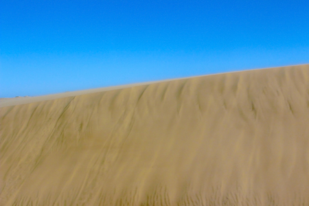 Photo for golden sand of african desert - Royalty Free Image