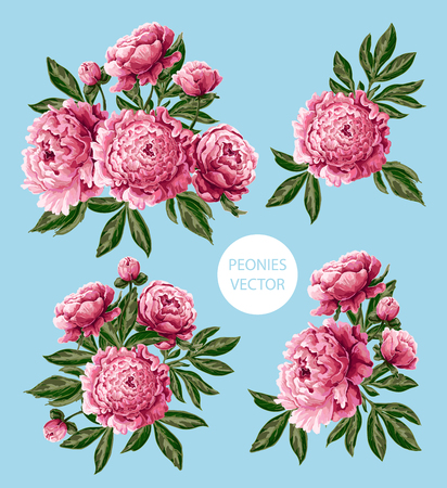 Illustration for Bouquet with pink peonies flowers. - Royalty Free Image