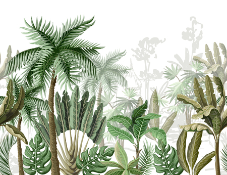 Illustration pour Seamless border with tropical tree such as palm, banana. - image libre de droit