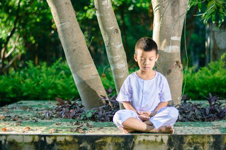 Foto de kid on white clothing , practice sitting Meditation under the big tree with peace in mind  - Imagen libre de derechos