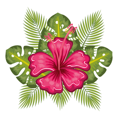 Illustration for Tropical flower and leaves over white background vector illustration - Royalty Free Image