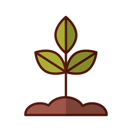 Illustration for Cultivated plant isolated icon vector illustration design - Royalty Free Image