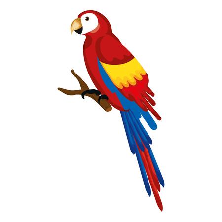 Ilustración de Exotic parrot in branch tropical bird vector illustration design - Imagen libre de derechos
