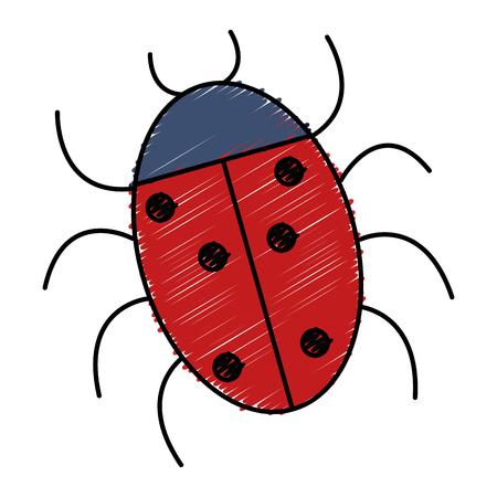 Illustration for ladybug animal isolated icon vector illustration design - Royalty Free Image
