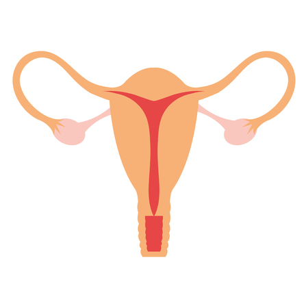 Ilustración de Female reproductive organ icon vector illustration design - Imagen libre de derechos