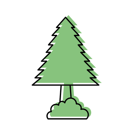 Illustration for pine tree forest natural flora foliage vector illustration - Royalty Free Image