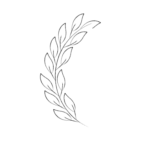 Illustration pour laurel decoration branch ornament image vector illustration - image libre de droit