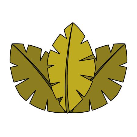 Ilustración de tropical leaves of palm tree flora image vector illustration - Imagen libre de derechos