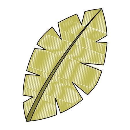 Ilustración de leaf palm tree foliage natural image vector illustration drawing - Imagen libre de derechos