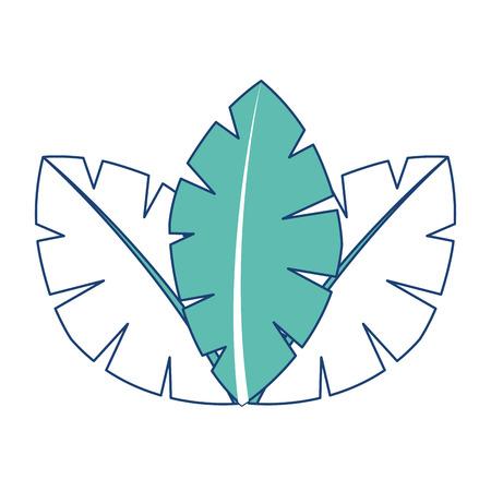 Ilustración de tropical leaves of palm tree flora image vector illustration image green - Imagen libre de derechos