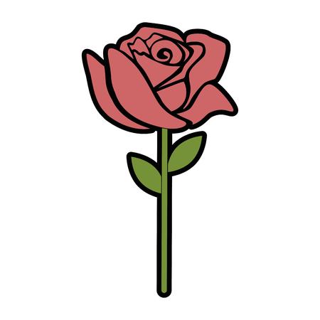 Illustration pour Beautiful rose isolated icon vector illustration design - image libre de droit