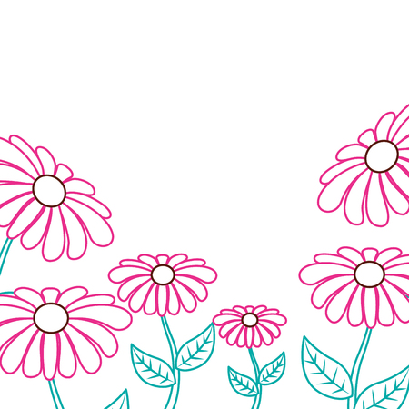 Illustration for Beautiful daisy flower frame decoration ornament vector illustration color lineal design. - Royalty Free Image