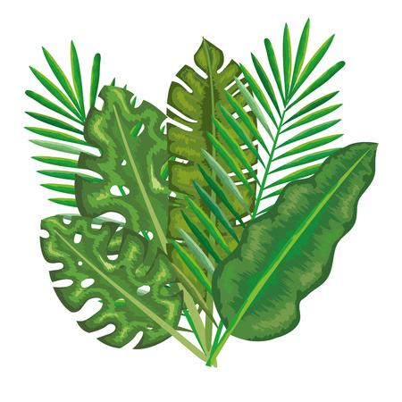 Ilustración de tropical and exotic palms leafs vector illustration design - Imagen libre de derechos