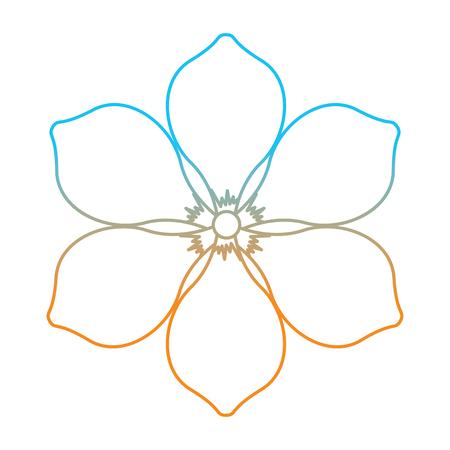 Illustration for Frangipani flower natural bloom decoration ornament vector illustration degrade color line image - Royalty Free Image