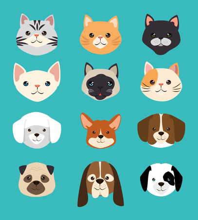 Illustration for dogs and cats pets friendly vector illustration design - Royalty Free Image