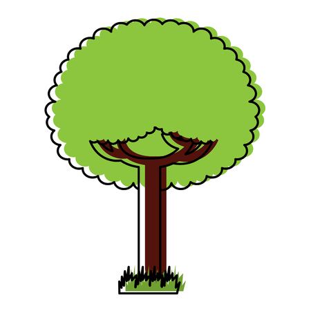 Illustration pour Green tree leafy branches natural on grass vector illustration - image libre de droit