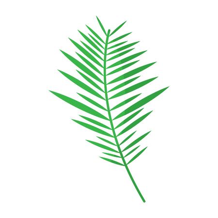 Illustration pour green branch palm leaves frond natural vector illustration - image libre de droit