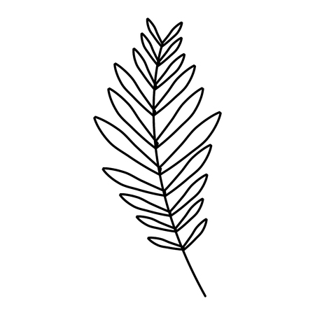 Ilustración de branch palm leaves frond natural vector illustration outline design - Imagen libre de derechos