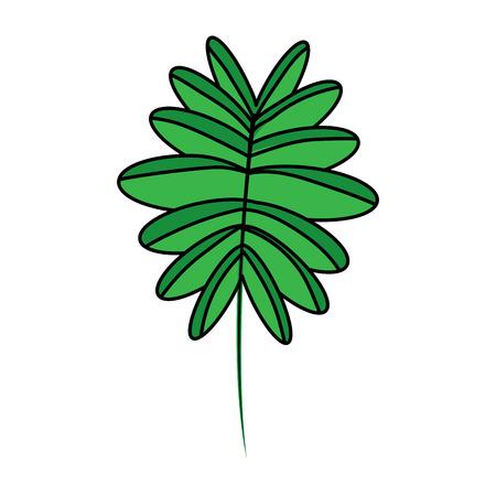 Ilustración de green branch palm leaves frond natural vector illustration - Imagen libre de derechos