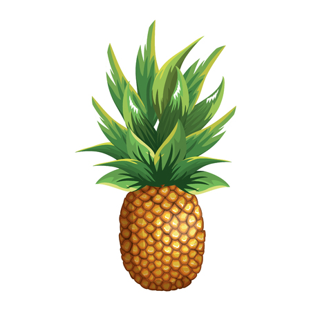 Illustration for tropical and exotic fruit vector illustration design - Royalty Free Image