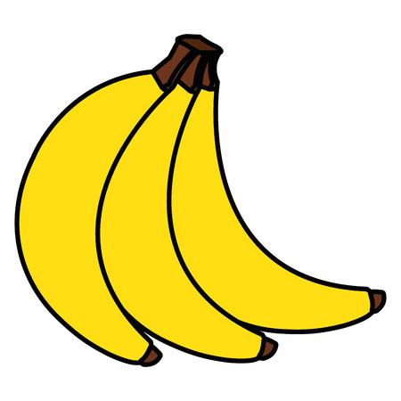 Ilustración de tropical and exotic banana fruit vector illustration design - Imagen libre de derechos