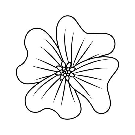 Illustration pour flower periwinkle delicate decoration floral nature petals vector illustration outline desing - image libre de droit