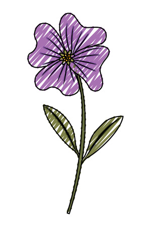 Illustration for cute flower periwinkle petals leaves stem icon vector illustration drawing image - Royalty Free Image