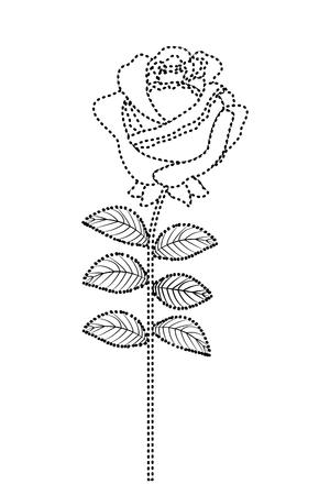 Illustration pour Delicate flower rose stem leaves nature decoration vector illustration dotted line image - image libre de droit